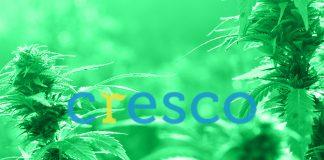 cresco-labs-cbd-market-cl