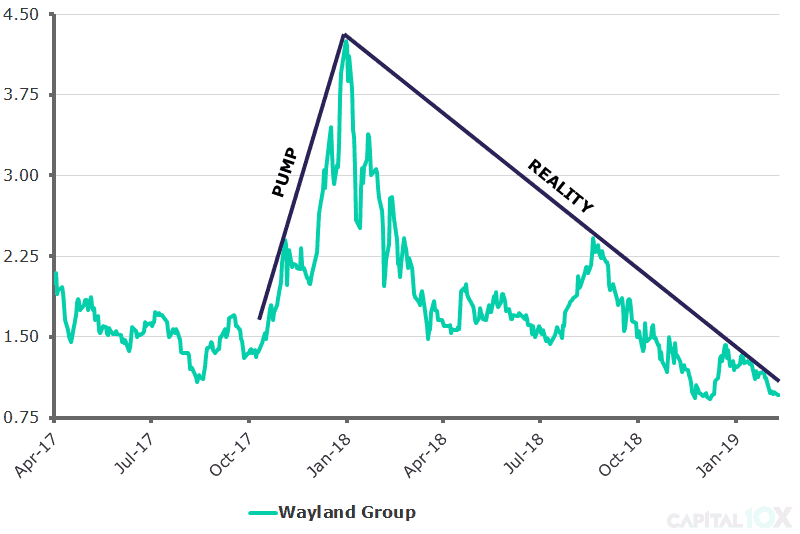 Wayland Group - Mar 2019 v2