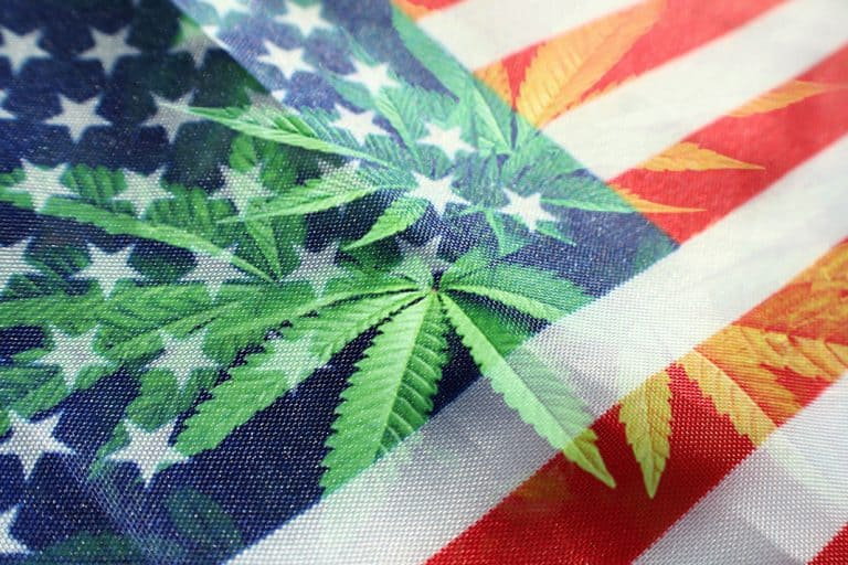 The Big 4 U.S. Cannabis Producers Report Strong Q3 Results